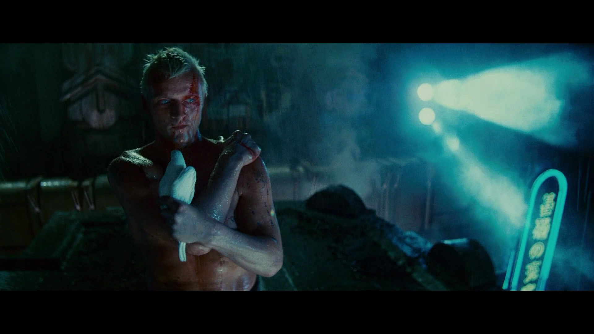 monstrosity in blade runner Technology and frankenstein and monstrosity oh, my on the other side of the coin, we see films such as blade runner where replicants that look.